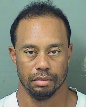 Tiger Woods Busted For DUI